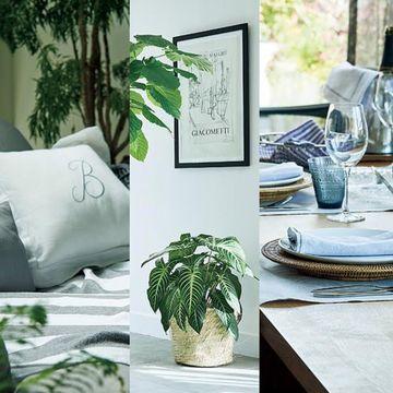 夏の快適インテリア「グリーン」や「リネン」で涼やかな空間作り
