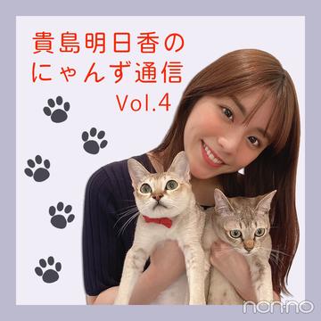 ノンノモデルが愛猫トーク♡ 貴島明日香のにゃんず通信 #04 にゃんずのお気に入り