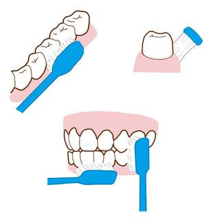歯周病予防に欠かせない!毎日のブラッシングを徹底しよう!