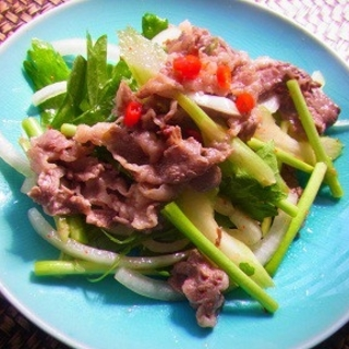 野菜たっぷりで脂肪も燃焼!タイ風スパイシービーフサラダレシピ