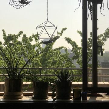 [富岡佳子private life]初夏の陽光