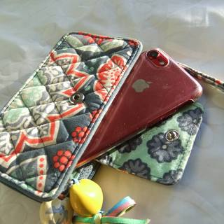 わたしの『ちいさい財布』はプチプラなのに優秀さんです_1_2-1