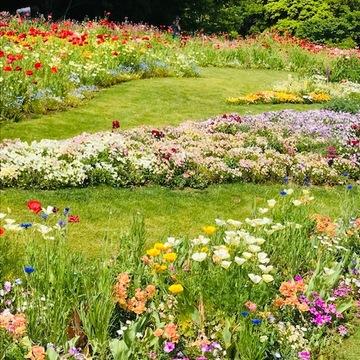 *里山ガーデンフェスタ*Garden Necklace Yokohamaha*
