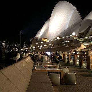 シドニー。火曜日。20時半。