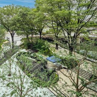 東京駅近くに緑豊かな空間「TOKYO TORCH Terrace」がグランドオープン