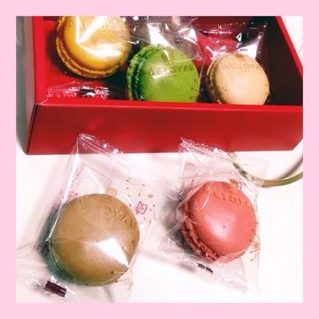 『 DALLOYAU 』 Macaron ٭¨̮♫