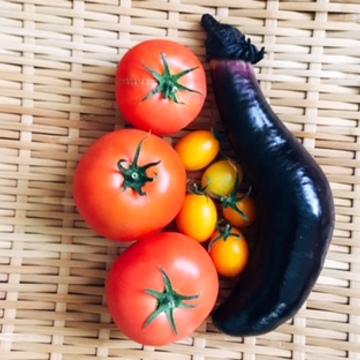 50代の元気:子どもたちも大好き!手作り野菜で夏のサラダランチ
