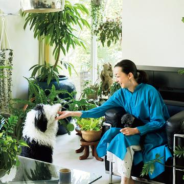 桐島かれんさんから学ぶ「観葉植物の飾り方のコツ」【グリーンを育てる幸せ、飾る楽しみ】