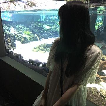 """【NewOpen】""""カワスイ""""に行ってきた☆"""