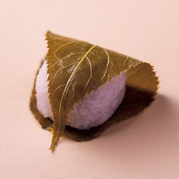 """様々な表情で華やぐ、桜を愛でる""""京の和菓子""""【「京都」桜にまつわる10の愉しみ】"""