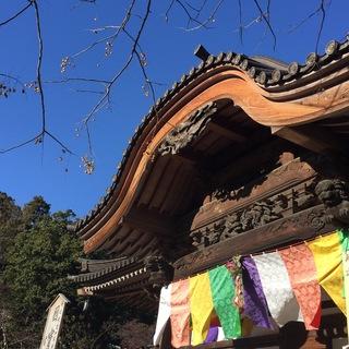 お寺グルメの宝庫、深大寺へ初詣