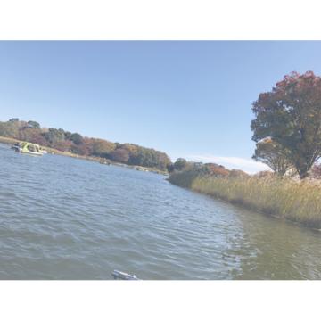 【都内で】秋を堪能!国営昭和記念公園の魅力♡_1_3
