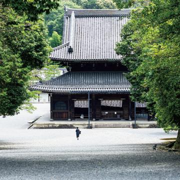 「御寺」と呼ばれる、皇室の菩提寺「泉涌寺」【皇室ゆかりの社寺】