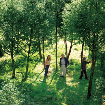 「榧の木のまな板」も販売する『榧工房 かやの森』【有元葉子、美味しいものは高知にあり】