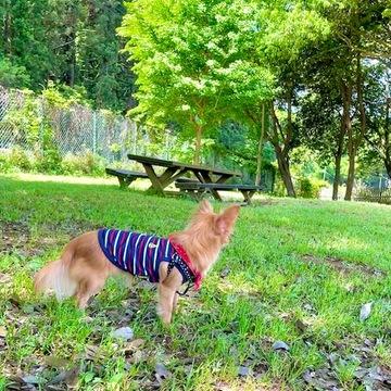 茨城の自然が楽しめる素敵な場所へ_1_7