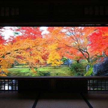 50代のための紅葉スポット!①日本の心を感じる、神社仏閣の美