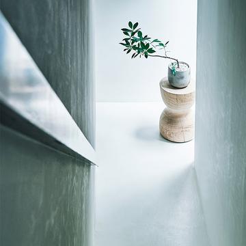 【グリーンを洗練させるアイデア】「中鉢」のグリーンでおしゃれな空間を演出!