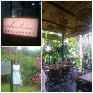 ボタニックガーデンのおしゃれカフェ Haliaでひと休み