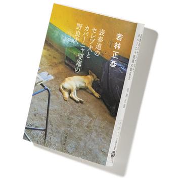 若林正恭著『表参道のセレブ犬とカバーニャ要塞の野良犬』を読む【街の書店員・花田菜々子のハタチブックセンター】