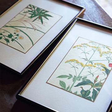 """一点ものの肉筆画や版画が気軽に! てっさい堂の""""植物画""""【京都 唯一無二の逸品】"""