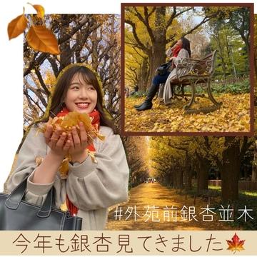 【外苑前】銀杏並木を見てきました!