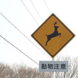 ちょっと気になる道路標識。