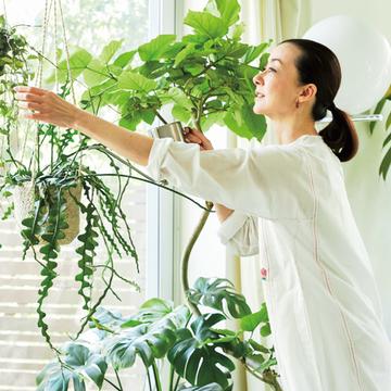 桐島かれんさんが教える「観葉植物の育て方のポイント」【グリーンを育てる幸せ、飾る楽しみ】
