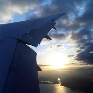 コロナの世界を飛ぶ。