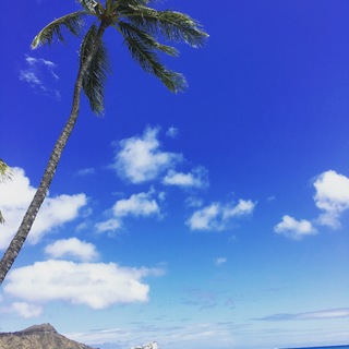 弾丸ハワイの旅。効率よく回るオアフ島②