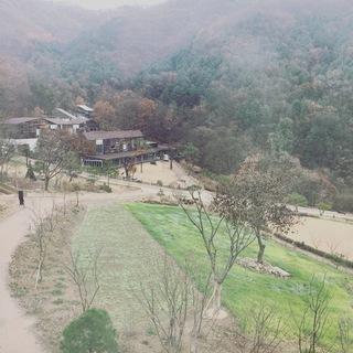 【忠清北道&江原道】 韓国、釜山からソウルへ 美味と美容の癒され縦断旅!④_1_2-3