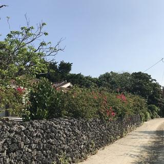 南の島旅行記~ゆったり島時間@竹富島編♪_1_2-2