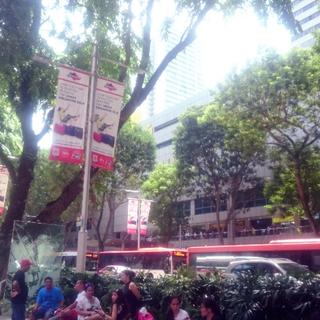 Great Singapore真っ盛りのシンガポールに来ています