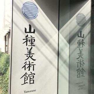 東京都内はすでに葉桜状態ですが・・・。 美術鑑賞とお花見セット