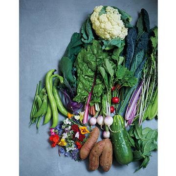 【夏のお取り寄せ2020】旬のおいしさがぎゅっと詰まった「NOTO高農園」の野菜セット