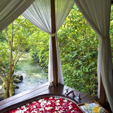 渓谷の緑が目に痛い マヤ ウブドゥ リゾート&スパ【インドネシアのお薦めホテル】