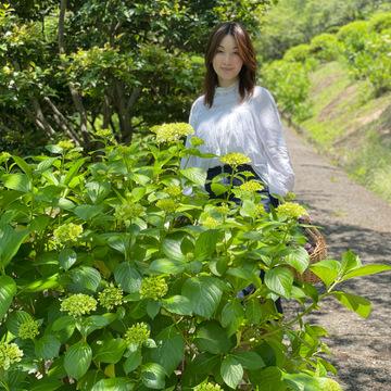 フロントコンシャスな白ブラウスにデニムスカートで日本庭園と紫陽花を見れる場所へ