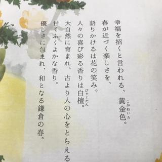 迎春の香り_1_2