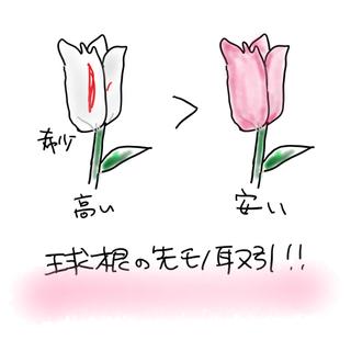 【胸キュンシネマ】チューリップ・フィーバー 肖像画に秘めた愛_1_1