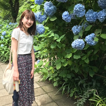 【鎌倉】紫陽花と観光名所
