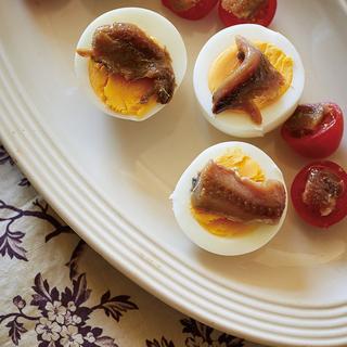 ゆで卵には絶対ビール!黄金の組み合わせ「トマトと卵」を使った簡単レシピ【平野由希子のおつまみレシピ #24】