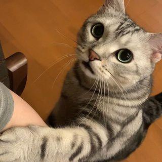 「ママ~!」