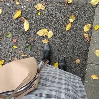 秋の足元に、11月号の付録タイツは、本当に使える!