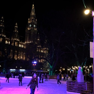 ウィーンの年末☆