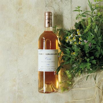 夏の夕方に飲みたい、ほっとする一本。プロヴァンスの「カシー ロゼ」【飲むんだったら、イケてるワイン】