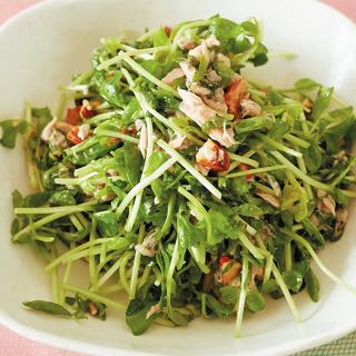 エイジング対策に最適。豆苗、ツナ、チアシードのサラダ