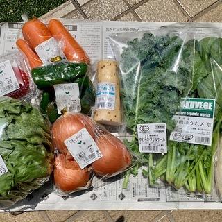 【お取り寄せグルメ】その3 有機野菜セット(9品)が736円!!!