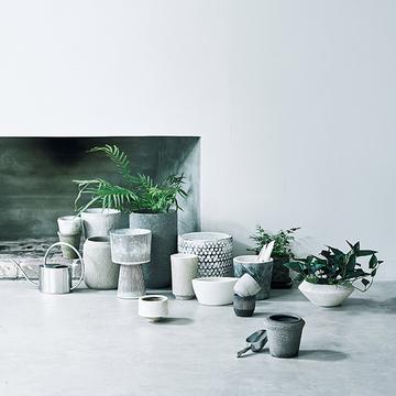 【グリーンを洗練させるアイデア】ニュアンスある鉢の選び方