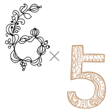 6×5 (自由を満喫する年)