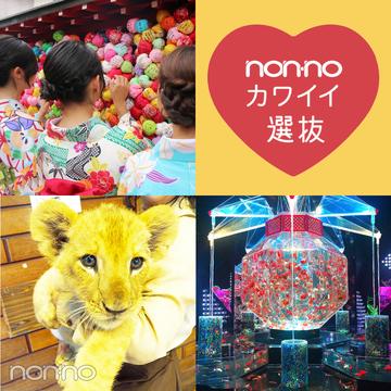 ノンノ専属読者モデルのおすすめ秋旅ブログまとめ♡ 【カワイイ選抜】