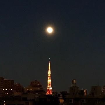 [富岡佳子private life]明けましておめでとうございます!